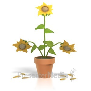 ID# 1312 - Thriving Flower  - Presentation Clipart