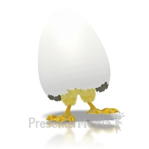 ID# 1679 - Baby Chicken or Chick Hatching from Egg - Presentation Clipart