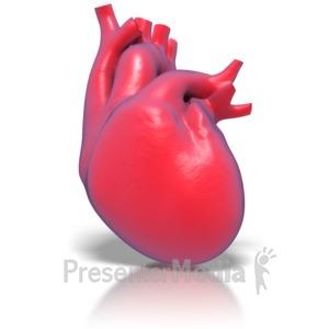 ID# 1767 - Human Heart - Presentation Clipart