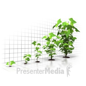 ID# 5097 - Organic Growth Graph - Presentation Clipart