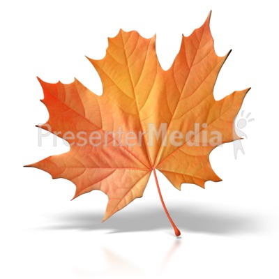 Autumn Leaf PowerPoint Clip Art