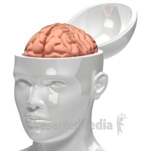 ID# 6575 - Brain Inside Head - Presentation Clipart