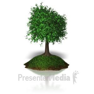 ID# 6782 - Island Tree - Presentation Clipart
