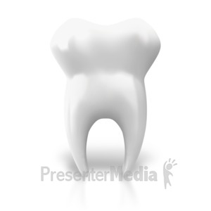 ID# 7648 - Single Tooth Upright - Presentation Clipart