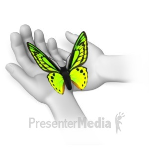 ID# 8118 - Butterfly Sitting In Hands - Presentation Clipart