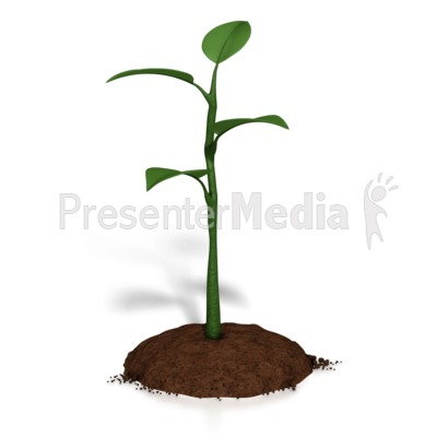 Small Plant Growth PowerPoint Clip Art