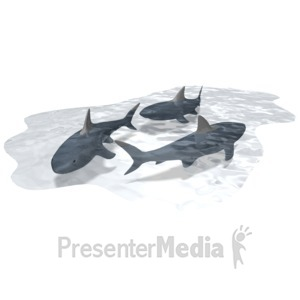 ID# 10156 - Pool Of Sharks - Presentation Clipart