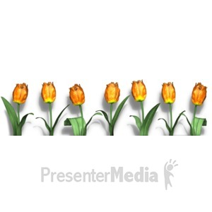 ID# 16853 - Row Of Flowers - Presentation Clipart