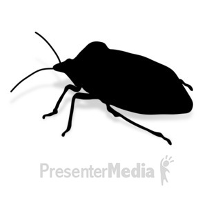 ID# 17009 - Stink Bug - Presentation Clipart