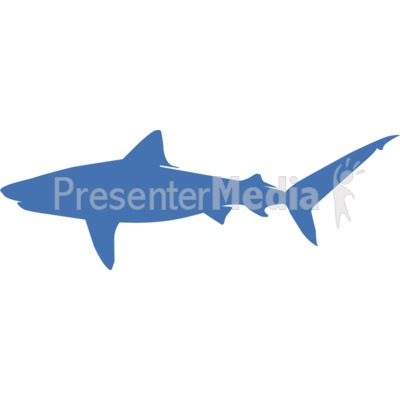 Tiger Shark Silhouette  Wildlife and Nature  Great Clipart for
