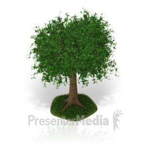 ID# 17333 - Lush Tree - Presentation Clipart