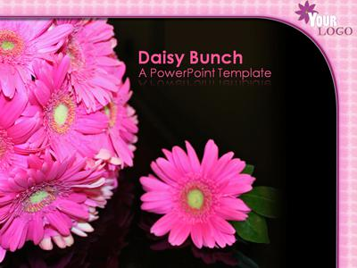 ID# 317 - Daisy Bunch - PowerPoint Template