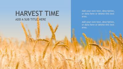 Harvest time a powerpoint template from presentermedia home powerpoint templates toneelgroepblik Gallery