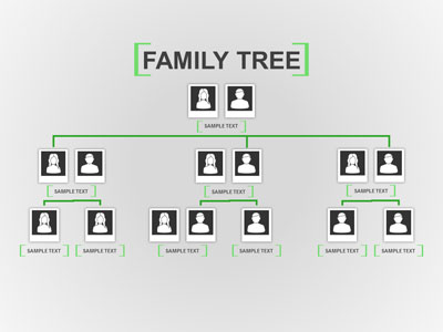 Family Tree Toolkit PowerPoint Template
