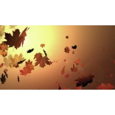 ID# 6365 - Autumn Wind - Video Background