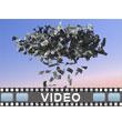 ID# 6649 - Raining Money - Video Background