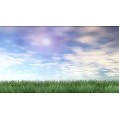 ID# 6888 - Organic Growth - Video Background