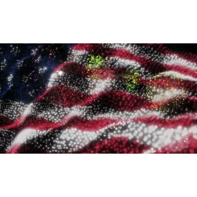ID# 8716 - Flag And Fireworks - Video Background