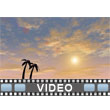 Tropical Sunset Video Background