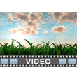 ID# 10243 - Swaying Grass - Video Background