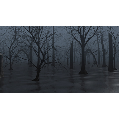 ID# 19320 - Dead Swamp - Video Background