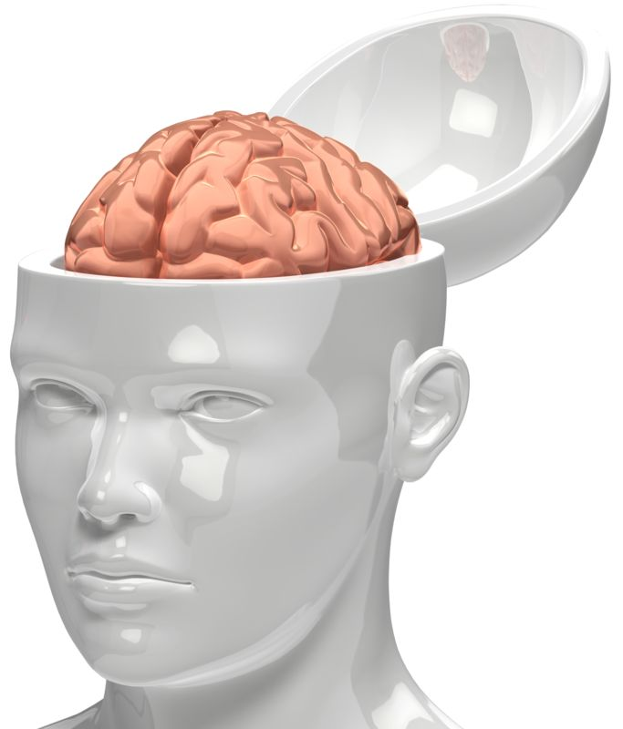 Clipart - Brain Inside Head