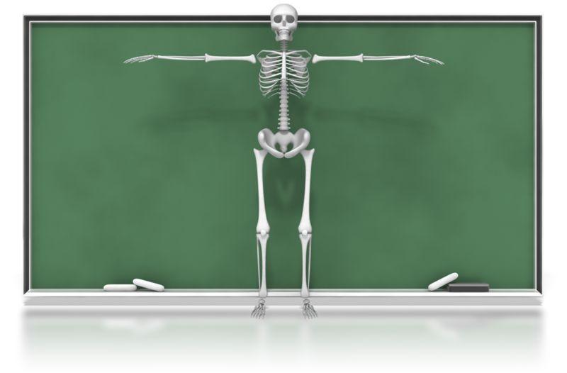 Clipart - Skeleton in Front of Chalkboard