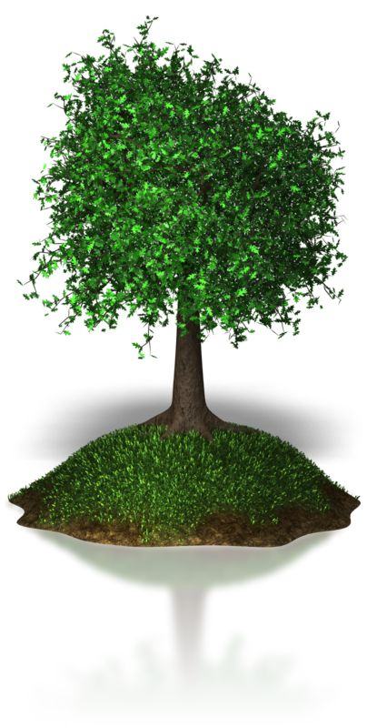 Clipart - Island Tree