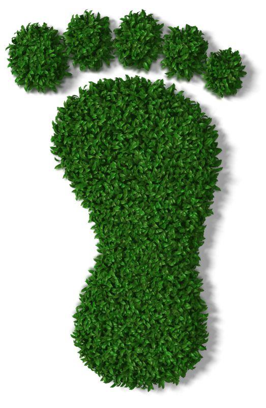Clipart - Green Grass Footprint