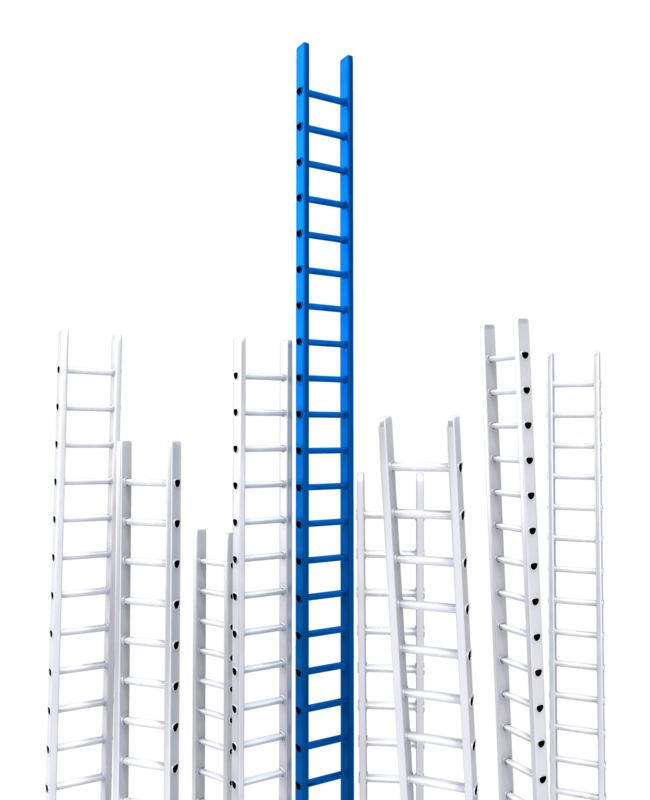 Clipart - Corporate Ladder Leader