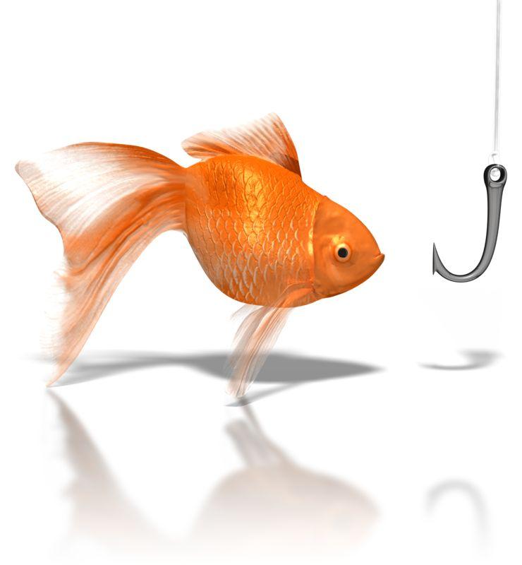 Clipart - Goldfish Looking At Hook
