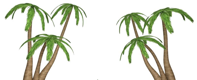 Clipart - Palm Tree Clusters