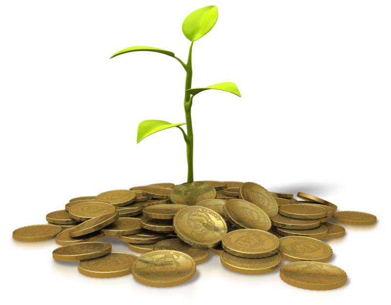 Clipart - Coins Investment - Plant
