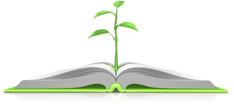 Clipart - Plant Growing Out Of Book