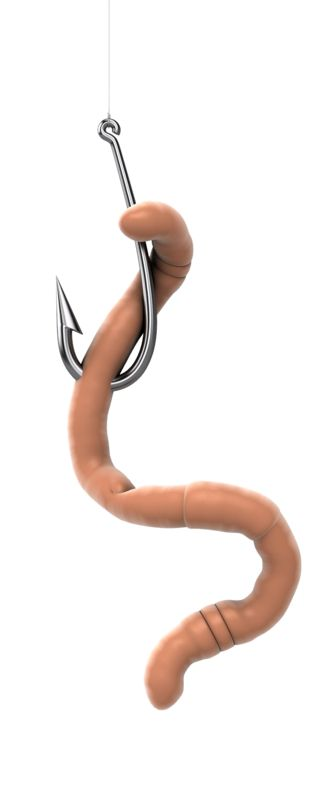 Clipart - Worm On A Hook