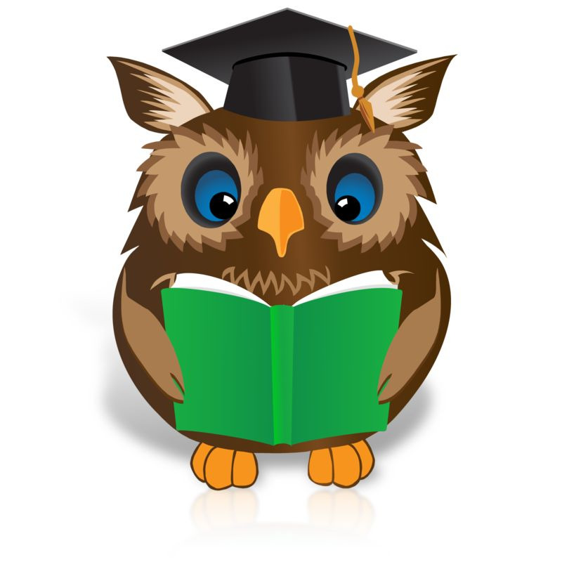 Clipart - Smart Owl Reading Book