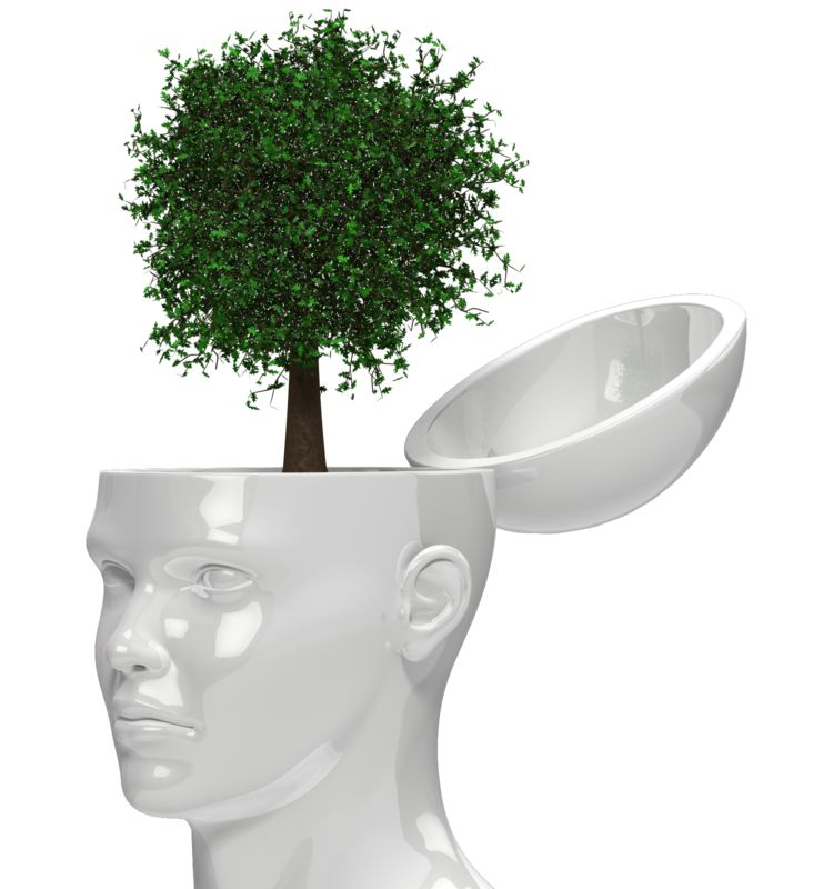 Clipart - Tree Growing Out Of Head