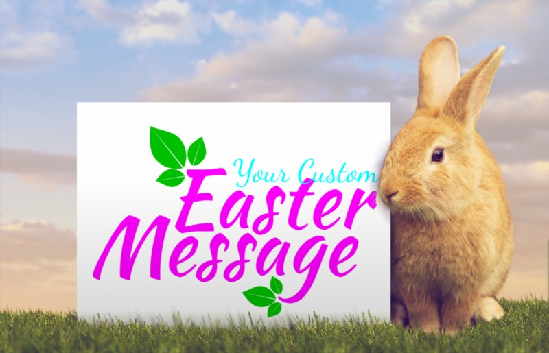 This Presentation Clipart shows a preview of Orange Easter Bunny Custom