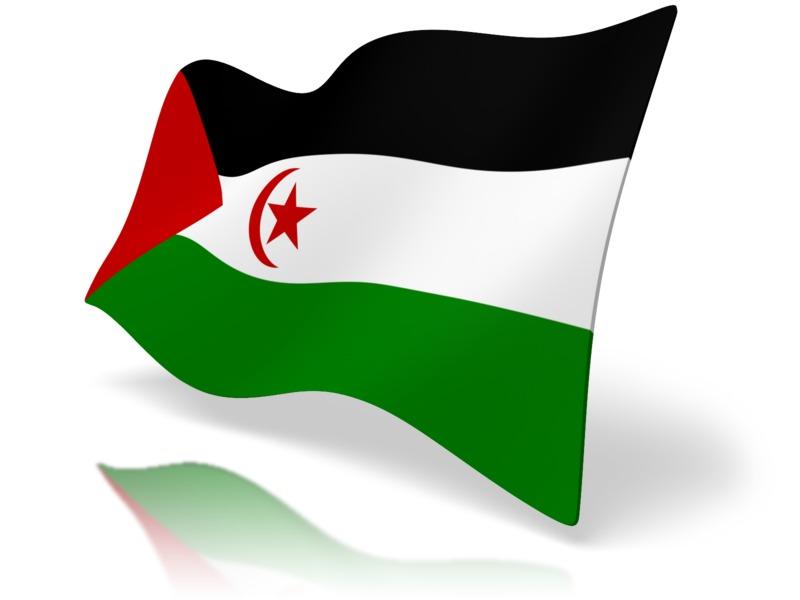 Clipart - Flag Western Sahara