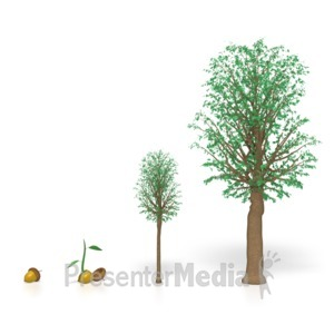 ID# 3973 - Tree Growing  - Presentation Clipart