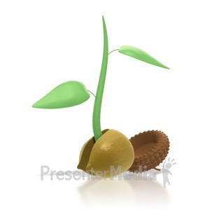 ID# 4081 - Acorn Sprout  - Presentation Clipart