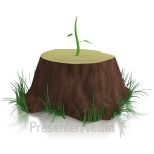 ID# 7302 - Don't Give Up / New Growth - Presentation Clipart