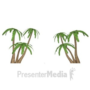 ID# 8644 - Palm Tree Clusters - Presentation Clipart