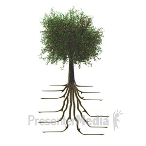 ID# 10083 - Tree With Roots - Presentation Clipart