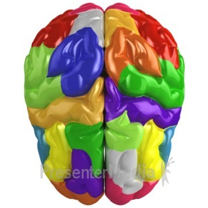 ID# 15044 - Creative Brain Colored - Presentation Clipart