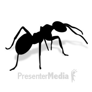 ID# 17012 - Ant - Presentation Clipart