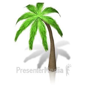 ID# 17328 - Palm Tree Isometric - Presentation Clipart
