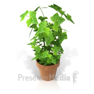ID# 17378 - Plant in a Pot - Presentation Clipart