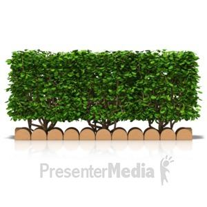 ID# 17414 - Hedge Front View - Presentation Clipart