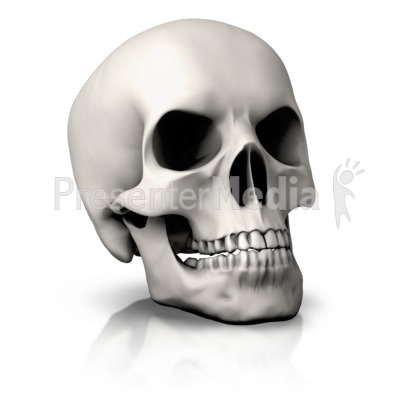 Simple Skull Angled PowerPoint Clip Art